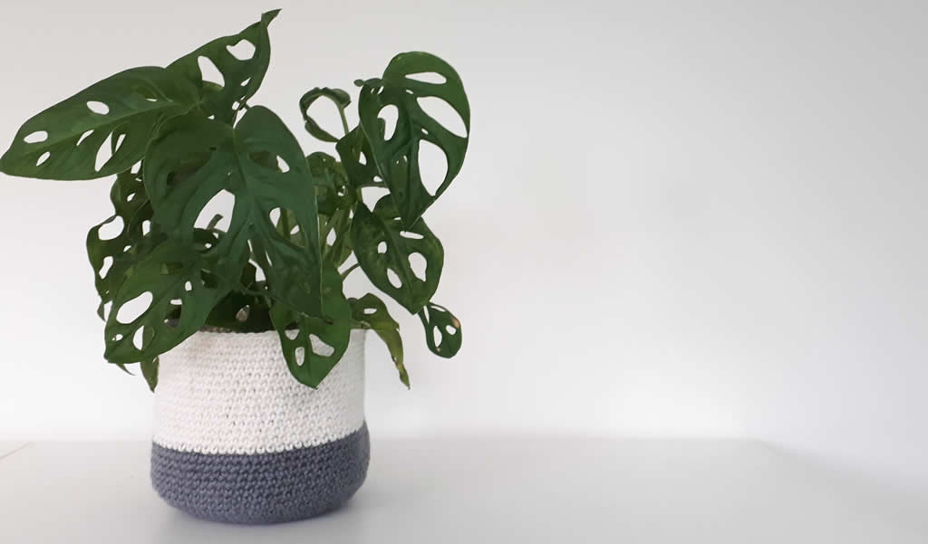 Crochet plant basket | Happy in Red